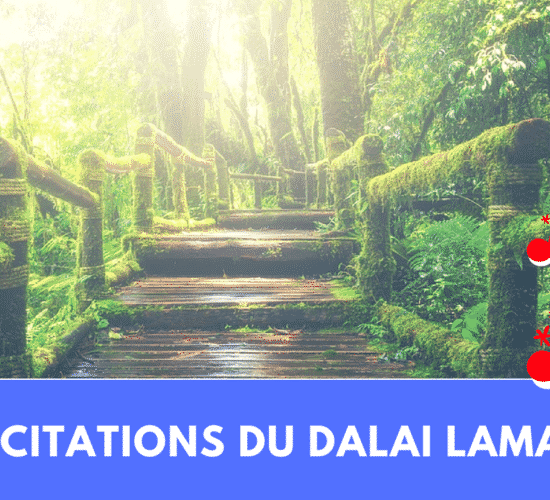 9 citations du dalai lama
